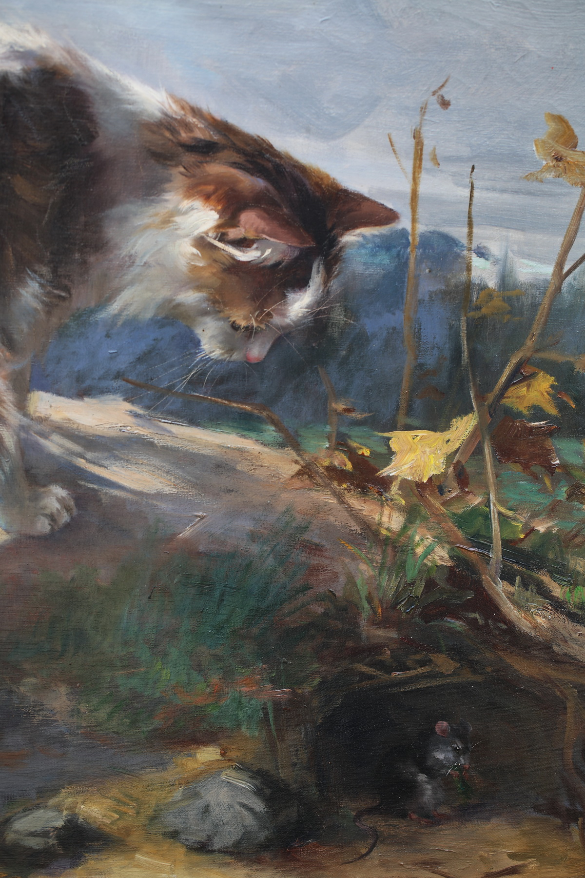 Jane de Hazon de Saint Firmin 1874-?