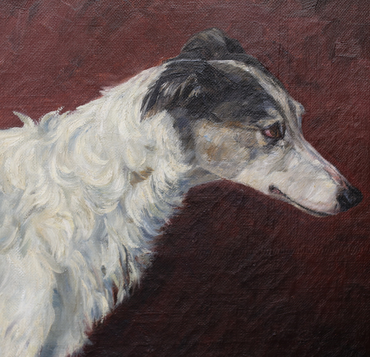 Portrait de lévrier peinture début XX