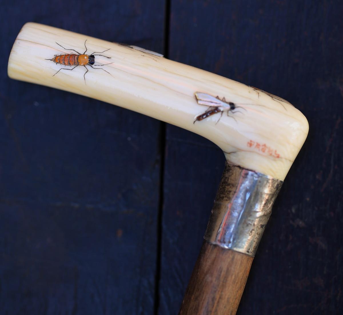 Shibayama cane collection