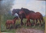 Henry SCHOUTEN 1864-1924